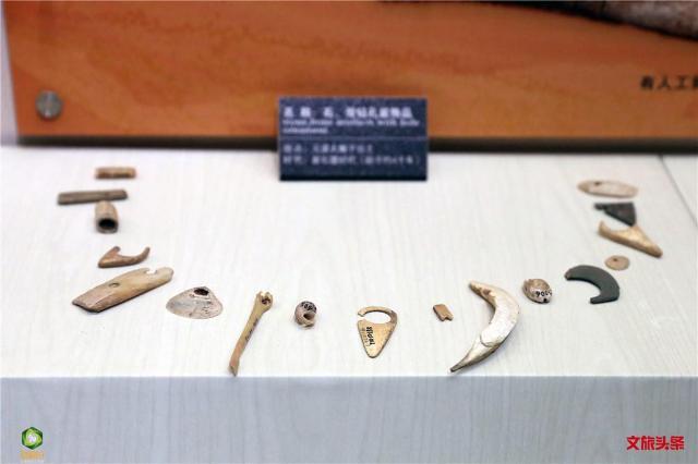 元谋博物馆2.jpg