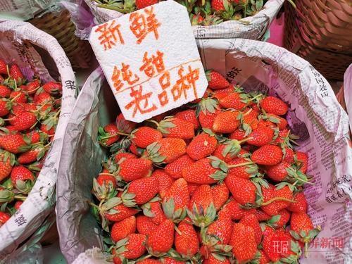 新鲜枇杷、草莓上市6.jpg