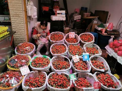 新鲜枇杷、草莓上市4.jpg