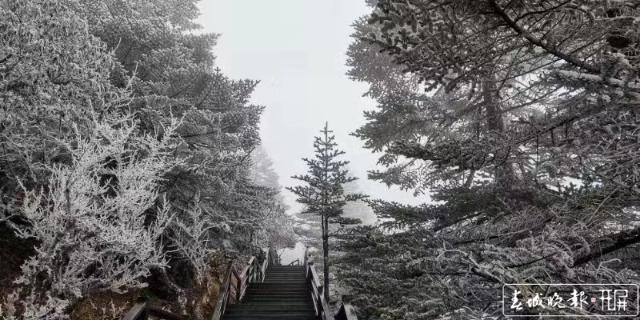 轿子雪山下雪啦!冰瀑、雾凇宛如仙境8.jpg