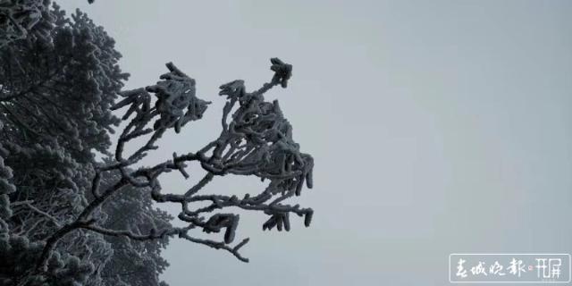 轿子雪山下雪啦!冰瀑、雾凇宛如仙境3.jpg