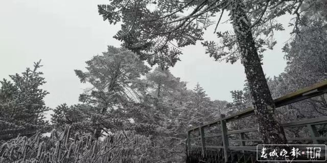 轿子雪山下雪啦!冰瀑、雾凇宛如仙境.jpg