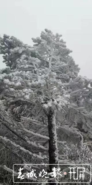 轿子雪山下雪啦!冰瀑、雾凇宛如仙境1.jpg