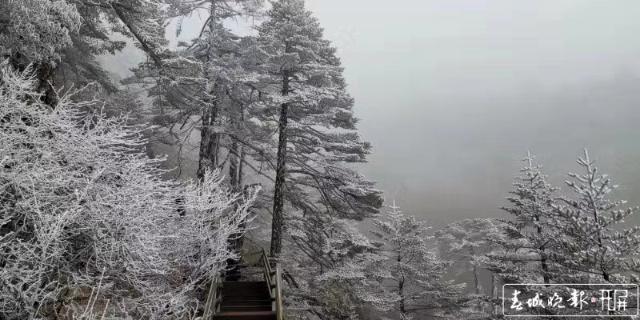 轿子雪山下雪啦!冰瀑、雾凇宛如仙境7.jpg