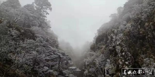 轿子雪山下雪啦!冰瀑、雾凇宛如仙境5.jpg