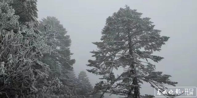 轿子雪山下雪啦!冰瀑、雾凇宛如仙境2.jpg
