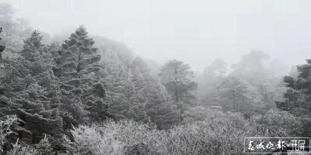 轿子雪山下雪啦!冰瀑、雾凇宛如仙境4.jpg