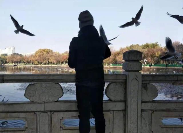 任贤齐现身昆明翠湖看海鸥,还逛了云南讲武堂1.jpeg