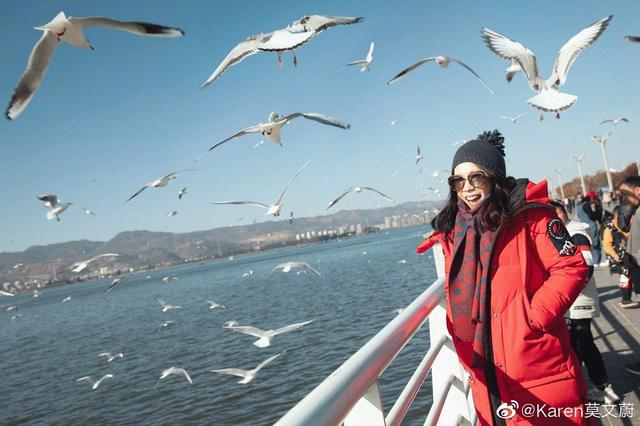 莫文蔚昆明演唱会后现身海埂大坝打卡喂海鸥