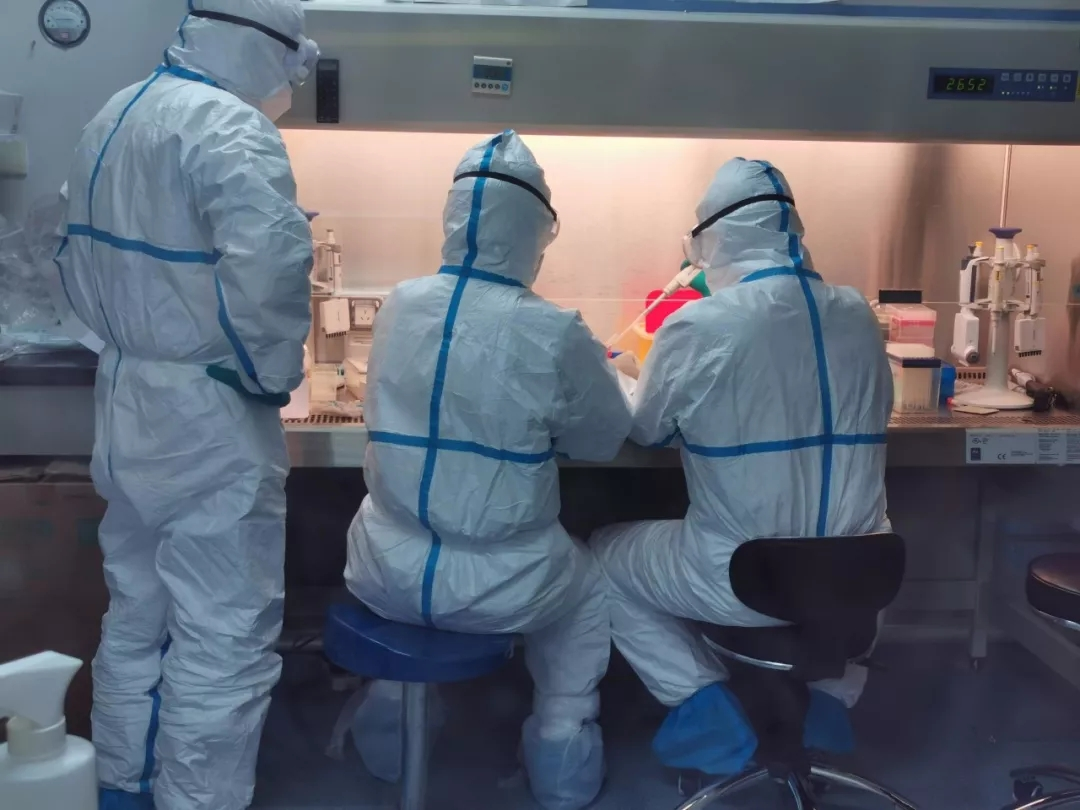 昆明市疾控如何快速检测新型冠状病毒2.webp.jpg