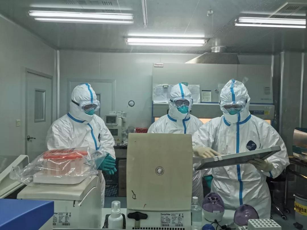 昆明市疾控如何快速检测新型冠状病毒1.webp.jpg