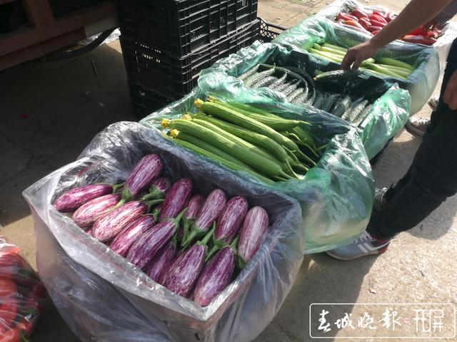 防疫期间,昆明每天上千吨蔬菜供应市民 (3).jpg