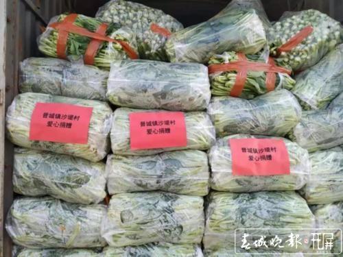 晋宁村民自发捐赠160吨蔬菜1.jpg
