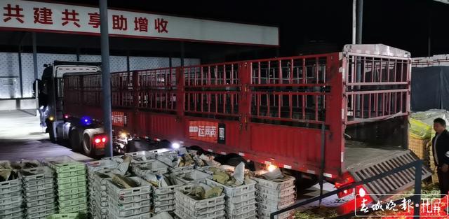 满载着大理人民的爱心! 176吨物资今日运往武汉 (3).jpg