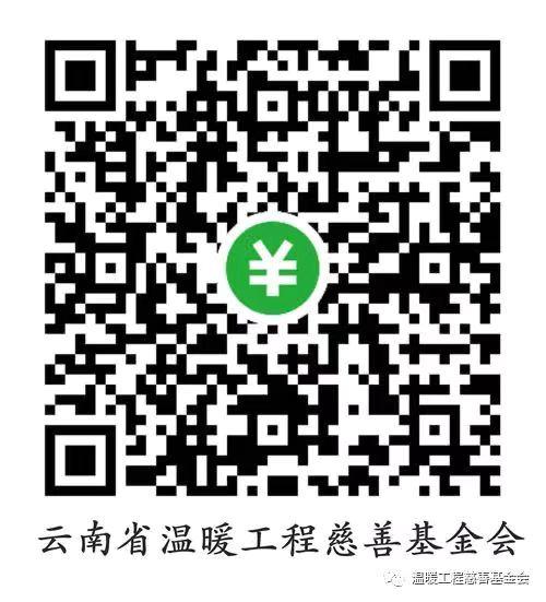 同心战疫 截至11日云南省温暖工程慈善基金会已收到抗疫捐款897,518.28元 (3).jpg