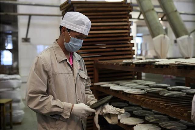 中国最大的茶企13日在西双版纳勐海复工5.jpg