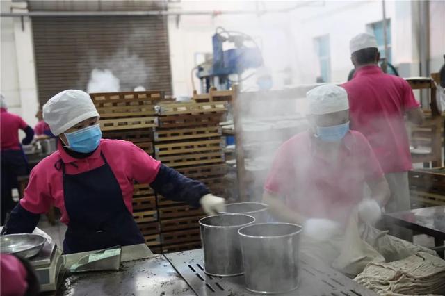 中国最大的茶企13日在西双版纳勐海复工8.jpg
