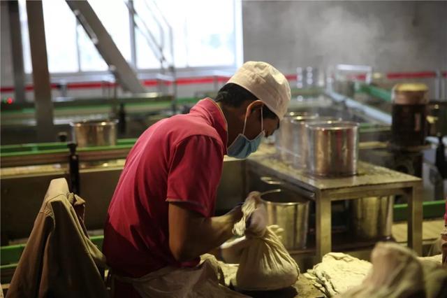 中国最大的茶企13日在西双版纳勐海复工6.jpg