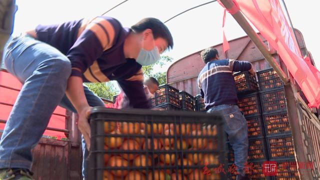 保山113吨时鲜蔬菜瓜果今早出发驰援武汉