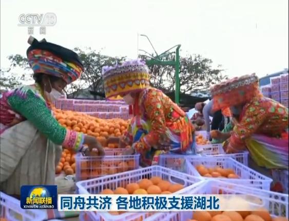 云南丽江将冷鲜猪肉、土豆、水果等物资捐赠给湖北抗疫前线.png