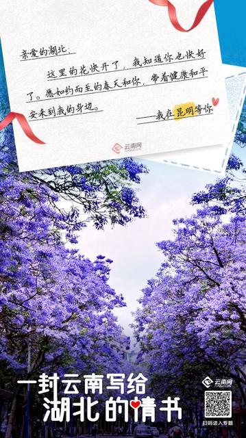 这有一份来自云南的情书请签收3.jpg