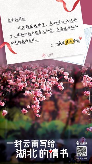 这有一份来自云南的情书请签收4.jpg