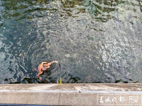 盘龙江又有人开始花样秀泳姿5.jpg