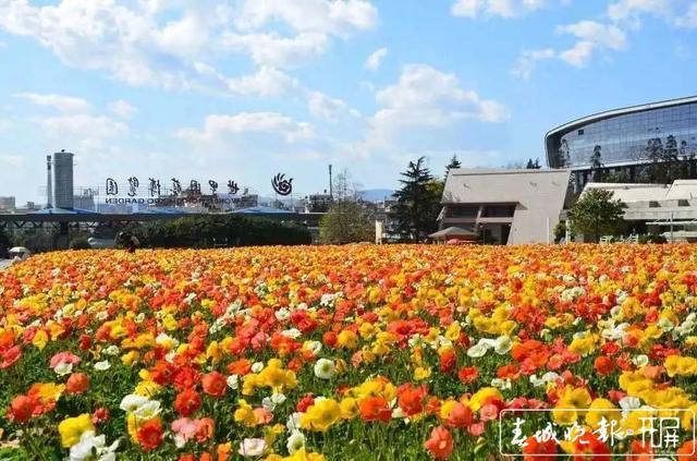 3月26日起昆明世博园旅游区有序开园.jpg