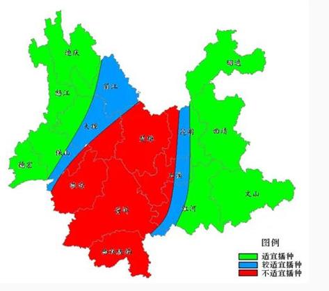 云南网:当前,云南抗旱形势非常严峻.png