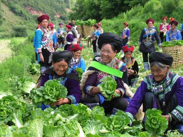 云南又有31个贫困县(市、区)拟退出贫困县序列11.jpg
