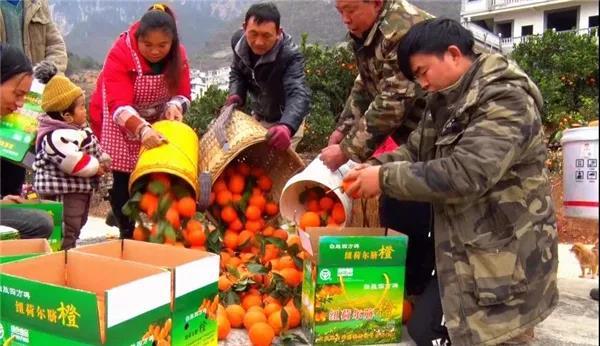 云南又有31个贫困县(市、区)拟退出贫困县序列7.jpg