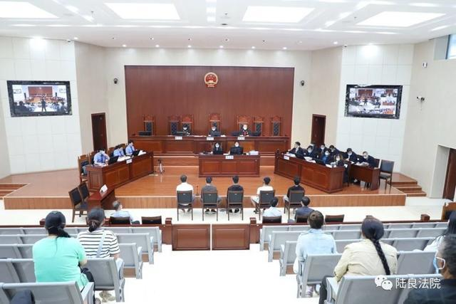 曲靖一村委会主任开庭受审