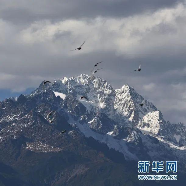 昆明丽江临沧上榜全球避暑名城7.jpg