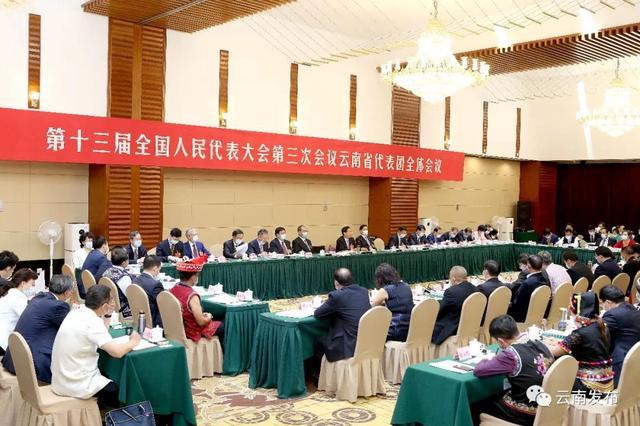 云南省代表团3.jpg