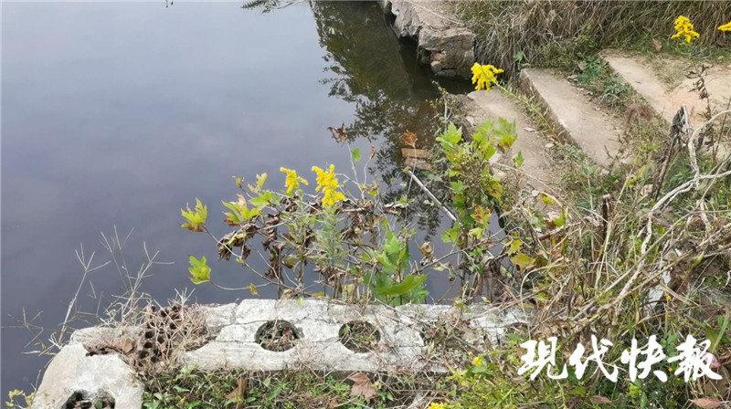 南京水库溺亡案推人者父母:女儿精神状态差,近年无来往