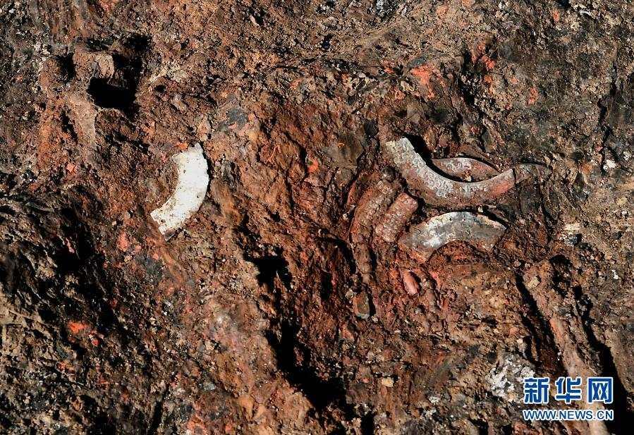 河南洛阳发现2600多年前戎人王级大墓