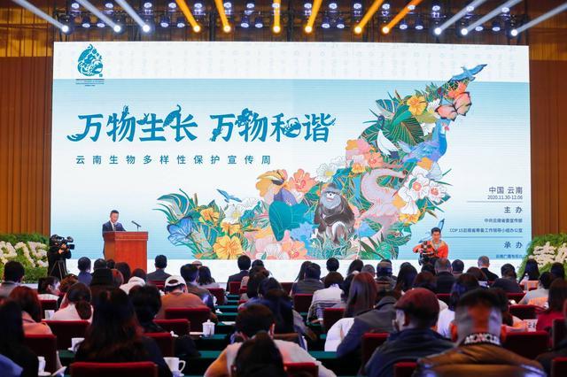 迎接COP15,云南生物多样性保护宣传周在昆启动,云南广播电视台 供图