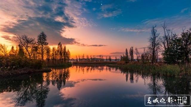 山川秀美、水天一色!晋宁滇池湿地迎来最佳观赏期,太美! 杨质高 摄 16:9