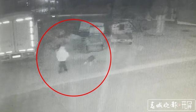 两男子1个月不到疯狂盗狗30余条被通海警方抓获.jpg