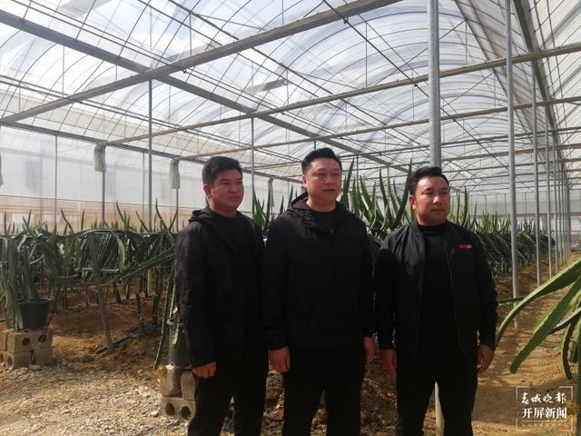 农产品种植合作社带着156户建档立卡户脱贫 柏立诚