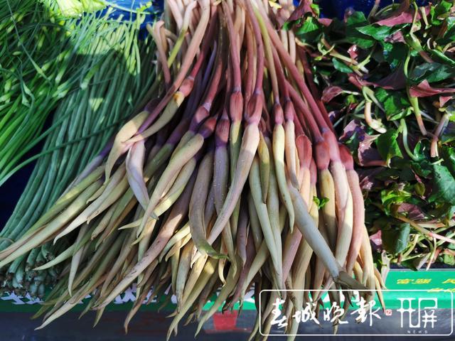 香椿、芋头花等时令蔬菜上市,市民忙尝鲜