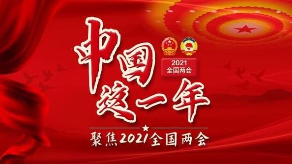 中国这一年——2021全国两会