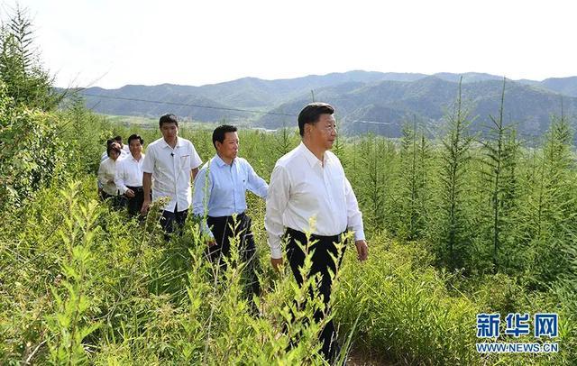沿着总书记的脚步看内蒙古