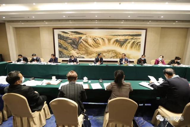 """云南省代表团举行小组会议,审议政府工作报告,审查""""十四五""""规划和2035年远景目标纲要草案"""