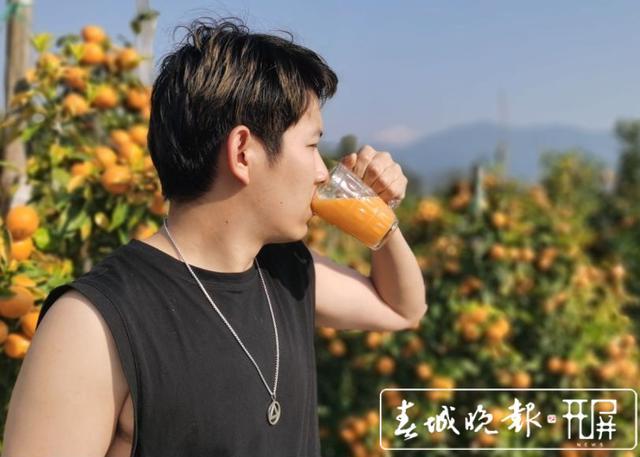 云南这款生长在风景区的沃柑,获国家级绿色食品认证