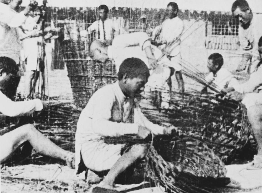 缴纳公粮1万石,劳动英雄们在南泥湾创造了奇迹