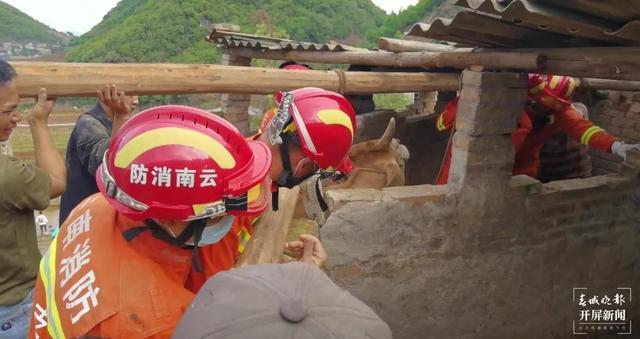一个出门放风跌进山洞,一个吃饭时掉进沼气池……这两个家伙累坏了文山消防员 春城晚报-开屏新闻记者 刘嘉 文 消防供图
