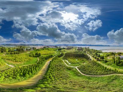 生态文明的晋宁实践 20000亩湿地竖起滇池保护屏障