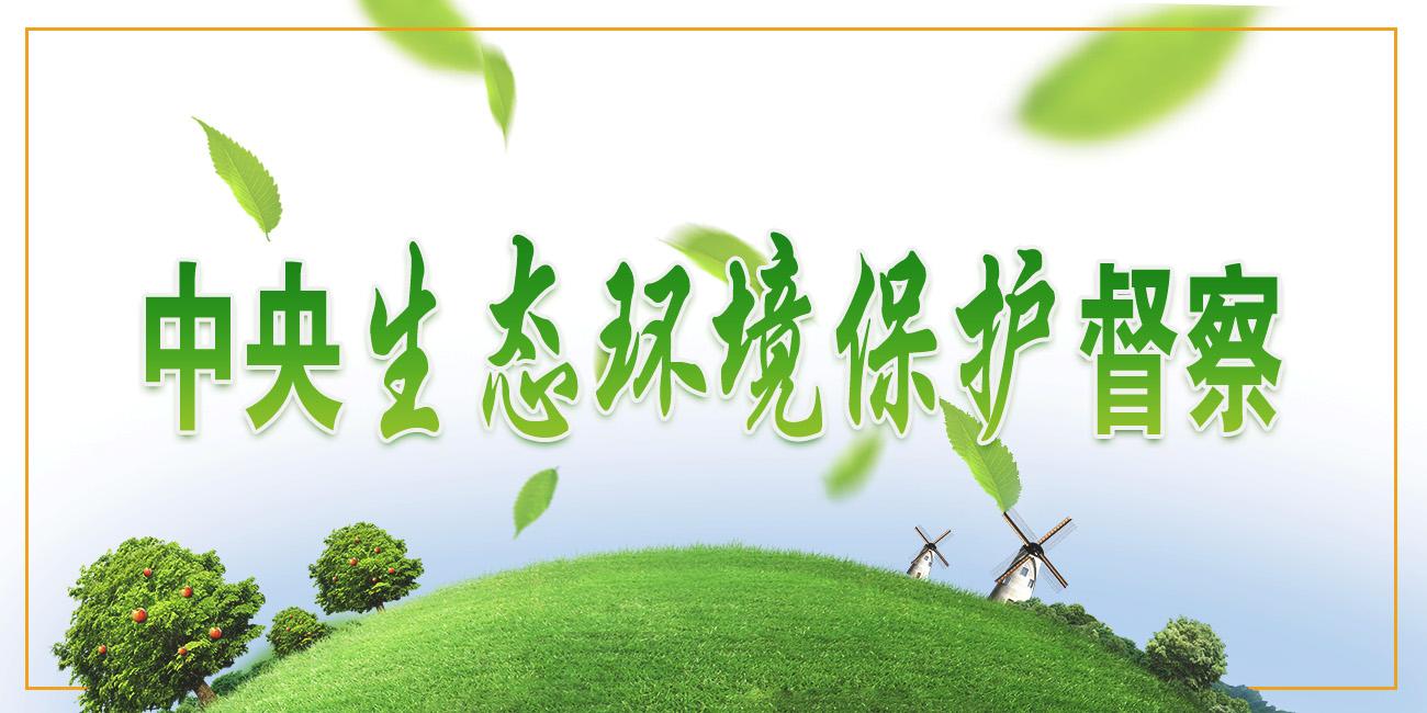 中央生态环境保护督查