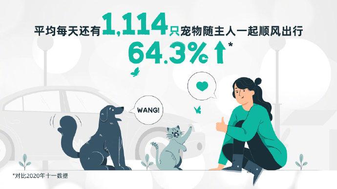 滴滴五一出行大数据:平均每天有1114只宠物随主人一起顺风出行